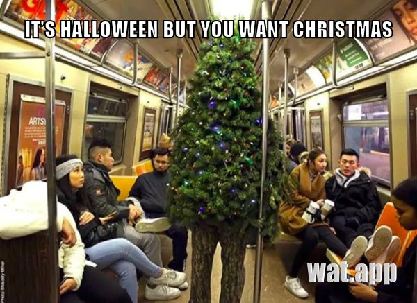 IT'S HALLOWEEN BUT YOU WANT CHRISTMAS