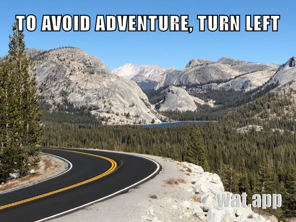 TO AVOID ADVENTURE, TURN LEFT